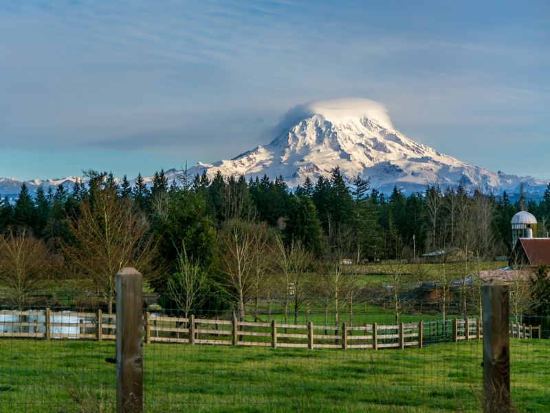 Mount Rainier Overshadows Webster Road