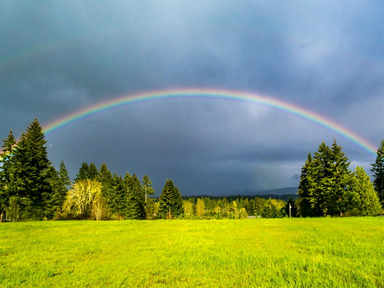 Tanwax Rainbow