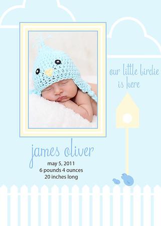 Little_Blue_Bird