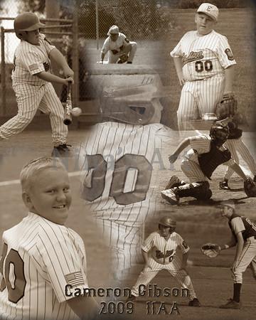 2009 11AA Baseball