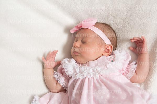 Lexi's Newborn photos