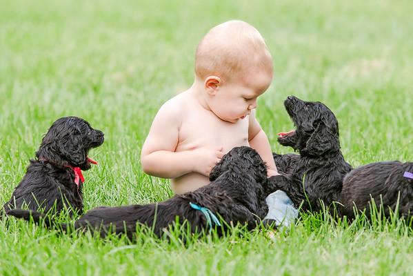 150809-Reece 1st Bday_puppies-0013