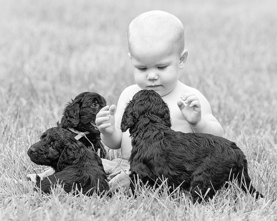 150809-Reece 1st Bday_puppies-0070BW