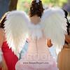 Vanessa's Sweet 16-0019