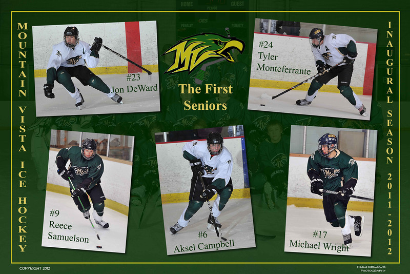 Vista Hockey Poster2