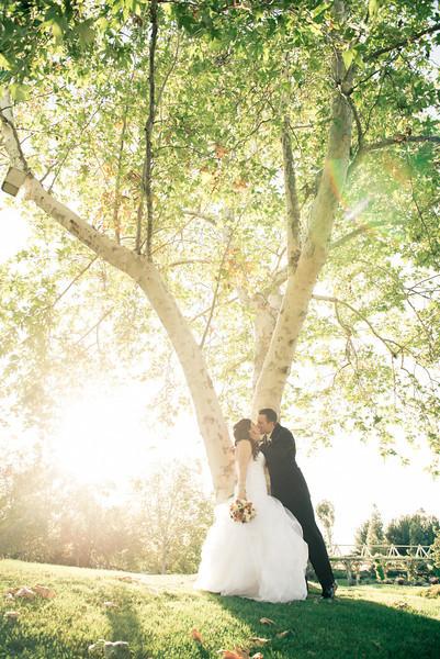 Gray Wedding Bridal Party