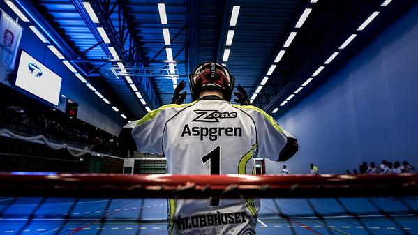 aspgren-2