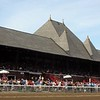 Saratoga The 6th running of the Victory Ride Porte Bonheur<br /> Trained by DP Duggan <br /> ridden by Ramon Dominguez