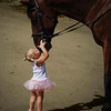 Little Girl stretching to kiss Horse