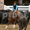 1-ariat non pro futurity final 1st herd 037