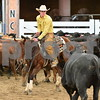 1-ariat non pro futurity final 1st herd 014