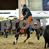1-gold cup open non pro 1st herd 017