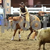 1-gold cup open non pro 1st herd 051