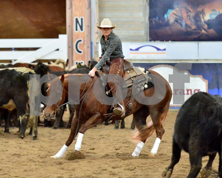 non pro classic challenge gr1 1st herd 006