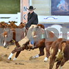 11-non pro futurity limited final and presentation 023