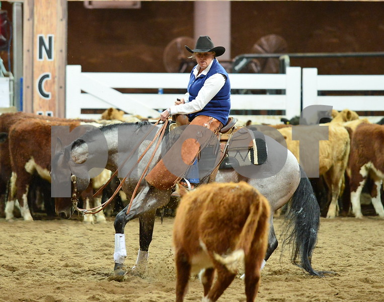 3-non pro futurity gr1 7th herd 239