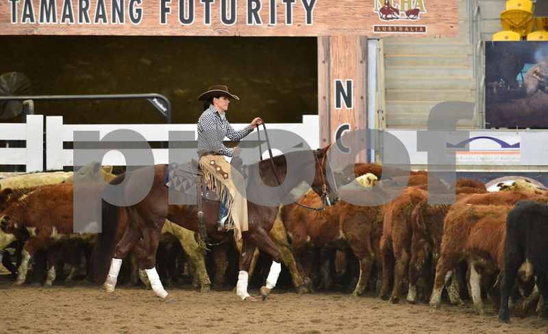 4-non pro futurity gr1 2nd herd 076