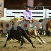 03-non pro futurity gr1 7th herd 035