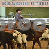 03-non pro futurity gr1 4th herd 082