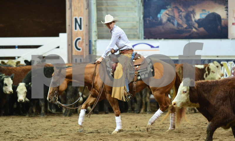 3-non pro futurity gr1 6th herd 108