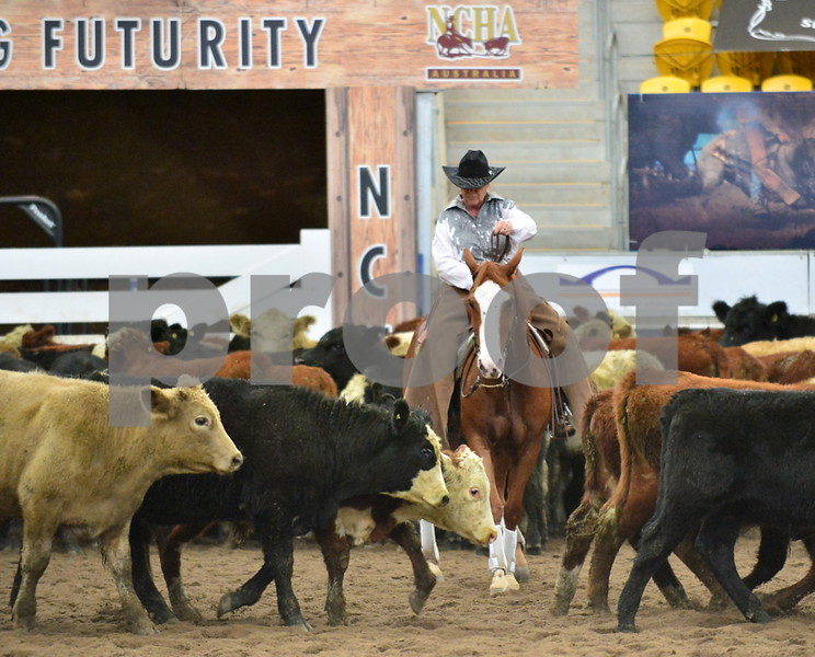 4-non pro futurity gr1 2nd herd 164