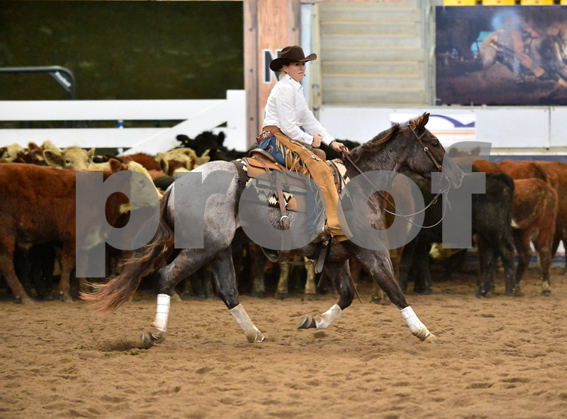 4-non pro futurity gr1 2nd herd 132