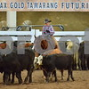 03-non pro futurity gr1 5th herd 143