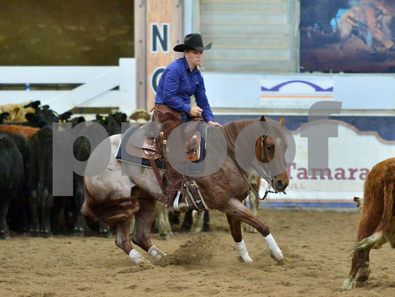 04-non pro futurity gr1 4th herd 224