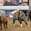 4-non pro futurity gr1 2nd herd 116