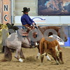 03-non pro futurity gr1 4th herd 216