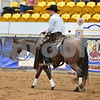 4-non pro futurity gr1 2nd herd 056