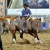 01-open futurity wild card 066