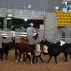 009-3500 novice 1st herd 011