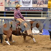 1-aqha senior horse plus presentaion 069