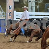 1-aqha senior horse plus presentaion 049