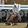 1-aqha senior horse plus presentaion 300
