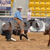 1-aqha senior horse plus presentaion 016
