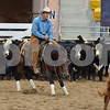 1-aqha senior horse plus presentaion 030