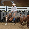 1-aqha senior horse plus presentaion 053