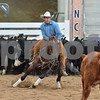 1-aqha senior horse plus presentaion 015