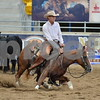 1-aqha senior horse plus presentaion 046