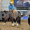 1-aqha senior horse plus presentaion 039