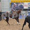 20-snafflebit futurity  round 1 1st herd 026