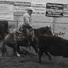Cascade Cow Cutters Show in Ellensburg - September 2016
