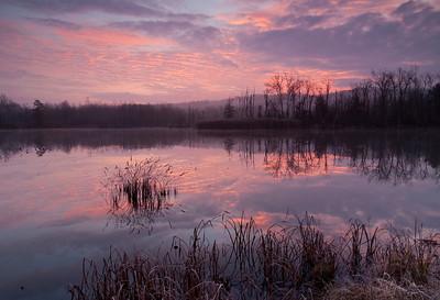 Beaver Marsh Nov 2010
