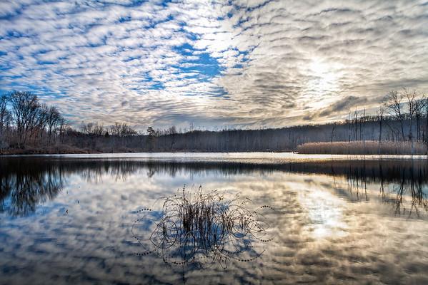 Beaver Marsh Reflections