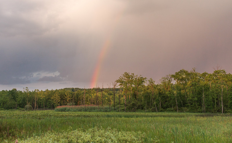 Rainbow over Beaver Marsh