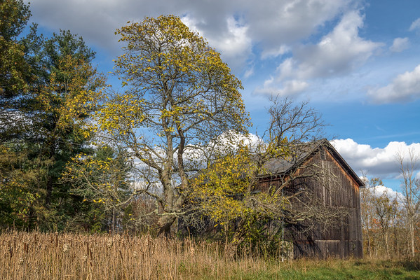 Barn on Riverview