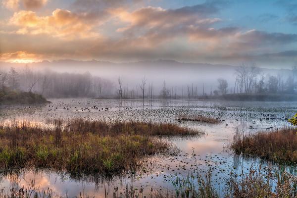 Fall Sunrise at Beaver Marsh