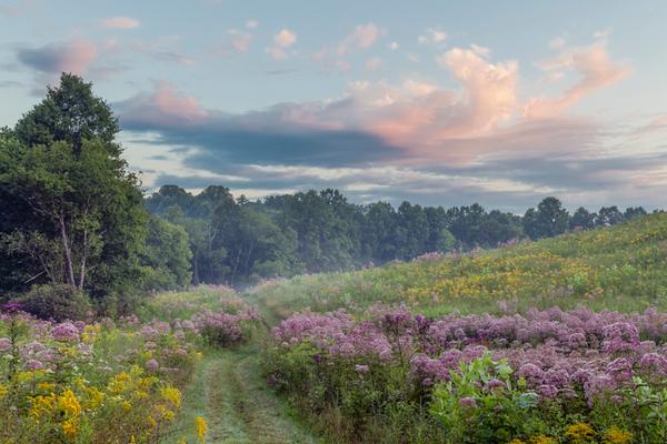 Dawn at Kendall Hills